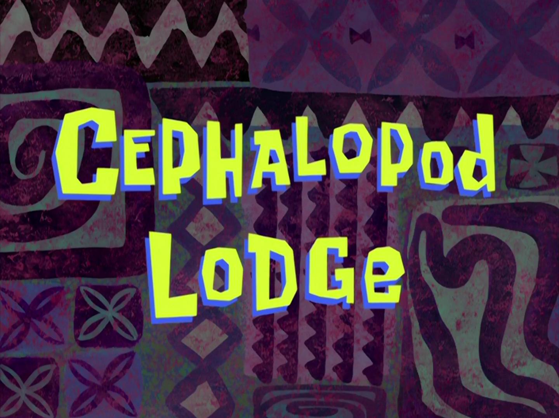 Cephalopod Lodge/transcript