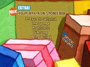 WOAB Your Brain