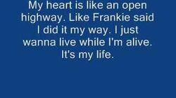 Bon_Jovi_-_It's_my_life_w_lyrics