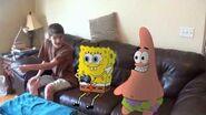 SpongeBob SquareShorts