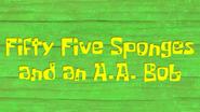 55sponges