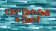 Catdrivingaboat