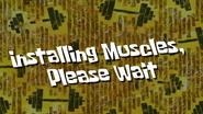 Installmuscles