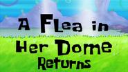 A Flea in Her Dome Returns