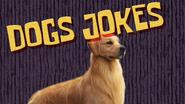 Dogsjokes