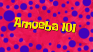 Amoeba101