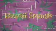 Hawaiisponge