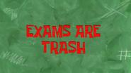 Examsaretrash