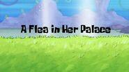Fleapalace