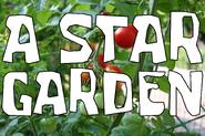 A Star Garden