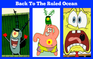 Back To The Ruled Ocean