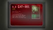 CAT-DOS Specimen 13
