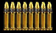 M1 Bullets