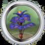 Дерево Педрумпель