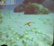 Демо Этап Рыба из демонстрации2