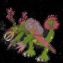 Pycarus (1)