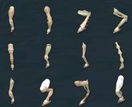 Ноги2