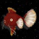 Fishkarp