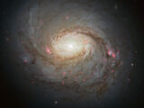 Fiction:Pristini Galaxy