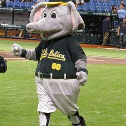 Stomper (Oakland Athletics)