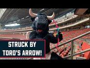 ❤️ Struck by TORO's arrow! ❤️ - Houston Texans
