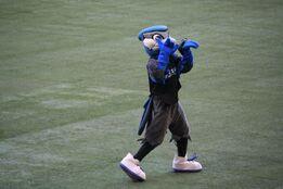 Ace Blue Jays.jpg