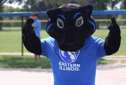 Billy the Panther - EIU