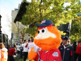 Youppi! (Montreal Expos/Montreal Canadiens)