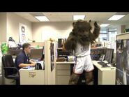 RUMBLE'S DAY AT WORK