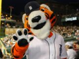 Paws (Detroit Tigers)