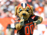 Chomps (Cleveland Browns)
