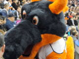 Sparky the Dragon (New York Islanders)