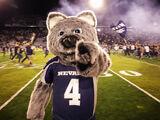 Wolfie (University of Nevada-Reno)