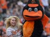 The Oriole Bird (Baltimore Orioles)