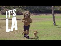 It's_LA,_It's_the_Kings-_Bailey