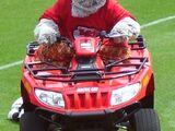 K.C. Wolf (Kansas City Chiefs)