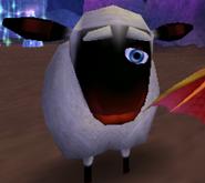 One eye sheep
