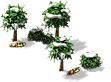 Grove (Snow).png