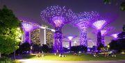 RealWorld Garden of Light.jpg