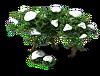 Poplar (Snow).png