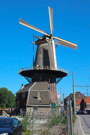 RealWorld The Rose Windmill from Delft.jpg