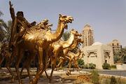 RealWorld Desert Oasis Installation.jpg