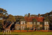 RealWorld Giraffe Hotel