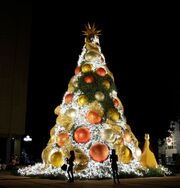 RealWorld Santo Domingo Christmas Tree.jpg