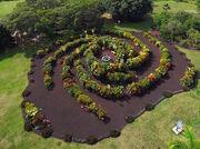 RealWorld Galaxy Garden.jpg