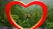 RealWorld Heart Swing.jpg