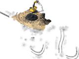 Coal Mining Equipment