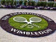 RealWorld Tennis Flowerbed.jpg