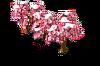 Sakura (Snow).png