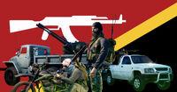 INS Rifleman Flag.jpg